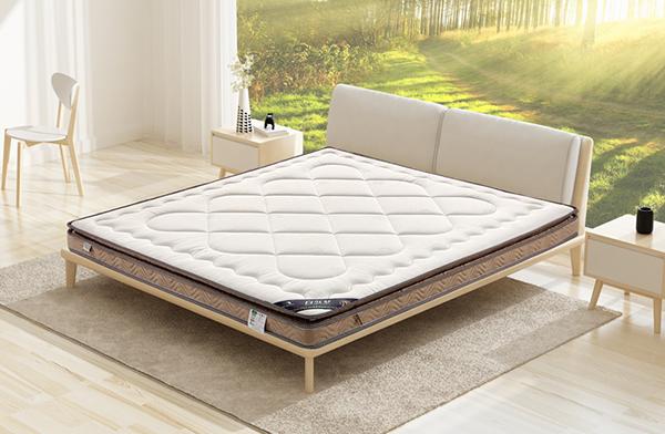 自然梦椰棕床垫白云